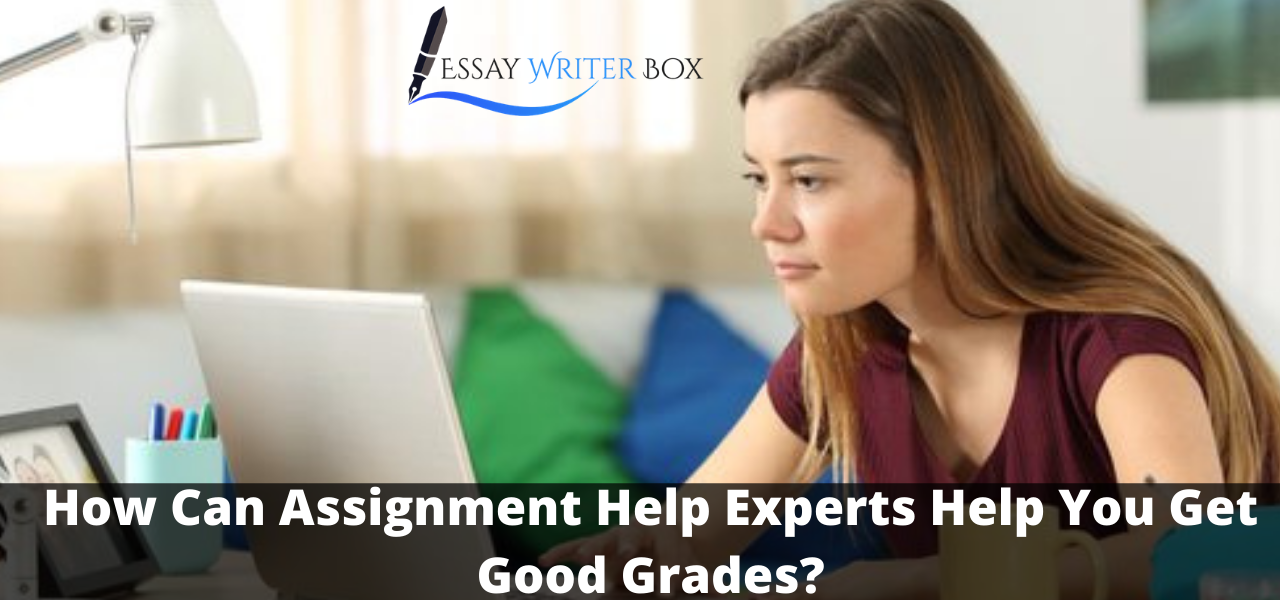 How Can Assignment Help Experts
