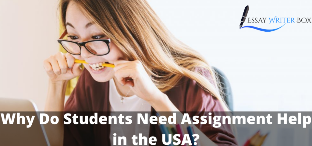 Why Do Students Need Assignment Help
